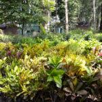 jardines-0457