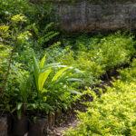 jardines-0464